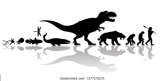 Vector history of life on Earth. Timeline of evolution from prehistoric animals, dinosaur, saber toothed tiger, monkey to cave man. Silhouette with transparent reflection isolated on white background.