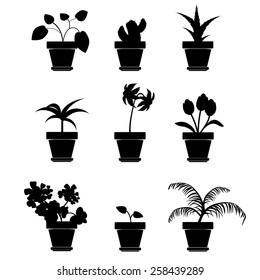 Vector Home Plants Clip art
