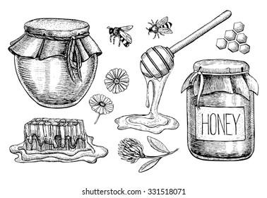 Vector honey set. Vintage hand drawn illustration. Engraved organic food