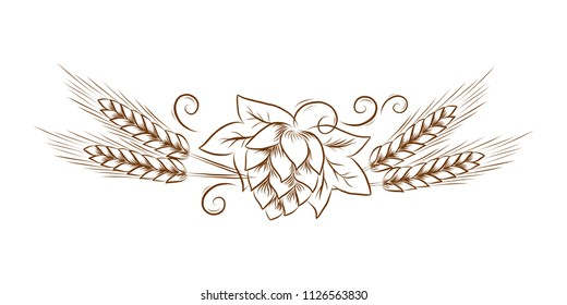 Vector hop cones with leafs and wheat outline illustration for invitation, poster, banner, logo, menu, craft beer product package. Vintage line art, floral sketch, For oktoberfest or thanksgiving day