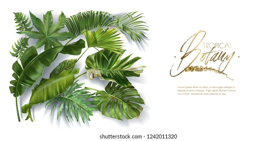 Vector horizontal banner with green tropical leaves on white background. Luxury exotic botanical design for cosmetics, spa, perfume, aroma, beauty salon. Best as wedding invitation card