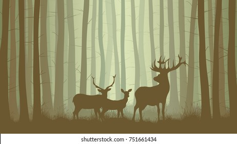 Vector horizontal illustration inside misty coniferous forest with family deer.