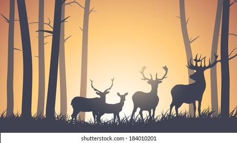 Vector horizontal illustration of wild deer in forest sunset.