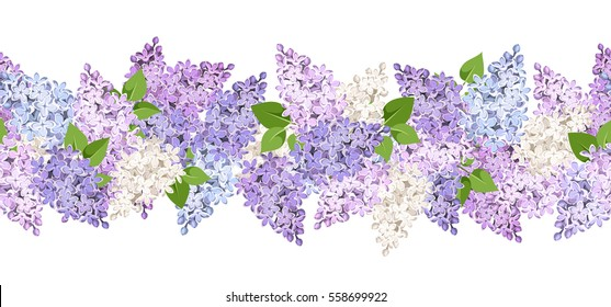 Vector horizontal seamless background with lilac flowers.