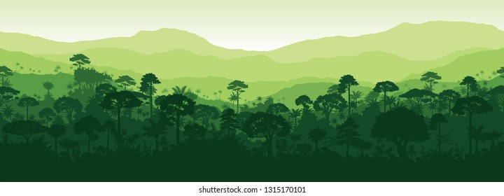 Vector horizontal seamless tropical rainforest Jungle forest background