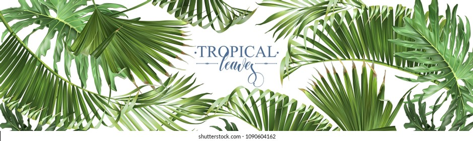 Vector horizontal tropical leaves banners on white background. Exotic botanical design for cosmetics, spa, perfume, health care products, aroma, wedding invitation. Best as web banner