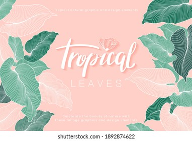 Vector horizontal tropical leaves banners on pink background. Exotic botanical design for cosmetics, spa, perfume, health care products, aroma, wedding invitation, web banner, poster