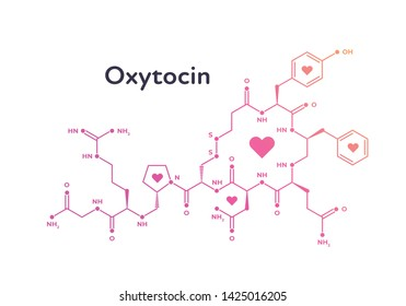 Vector hormones banner template. Oxytocin structure of pink color with heart symbol isolated on white background. Hormone assosiated with bond, care, love. Design for poster, education, presentation
