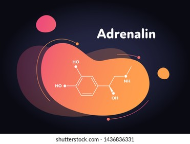 Vector hormones fluid modern banner. Adrenaline structure in liquid gradient trendy shape on black. Hormone associated with adrenal response system. Design for education, presentation, poster.