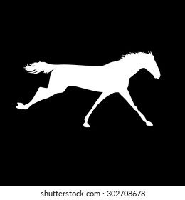 Horse Silhouette Moon Background Stock Vector Royalty Free