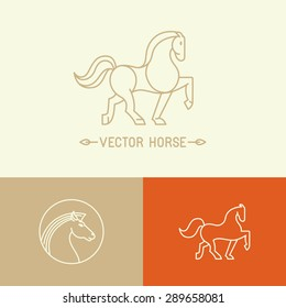 Vector horse logo template in trendy hipster  linear style - set of abstract emblems and concepts- mono line icons