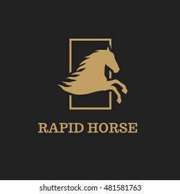 Vector horse for your design. Vector image of horse design on a black background. Gold horse logo template.