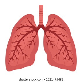 vector human lungs flat icon isolated on white background. lung organ anatomy symbol for health and medical illustrations.