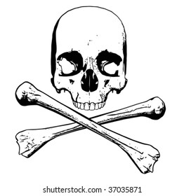 Vector of human skull - three separate parts