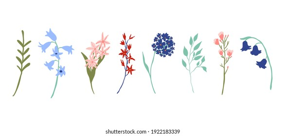 Vector icollection with wild flowers collection isolated on white background. Set of spring flowers