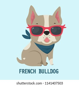 Vector icon dog breed French Bulldog. Puppy Bulldog in pink glasses. French Bulldog beige color