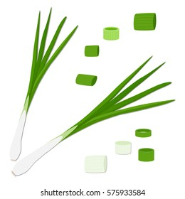 Vector icon illustration logo for whole ripe vegetable bitter onion with green stem, cut sliced meal, white background. Onion pattern consisting of vegetables bittersweet taste food. Eat fresh onions.
