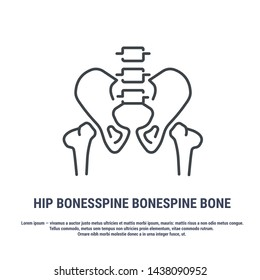 Vector icon. Line design. Hip bone. Bones and structure. Medicine and anatomy. Anatomical structure of man. Symbol, element, sign, logo, emblem. Concept illustration.