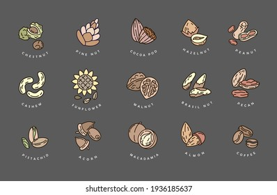 Vector icon and logo for nuts and seeds. Editable outline stroke size. Line flat contour, thin and linear design. Simple icons. Concept illustration. Sign, symbol.