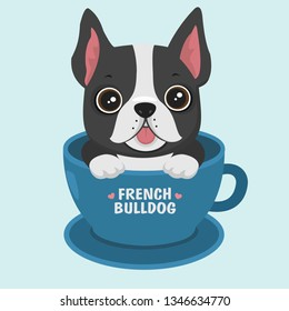 Vector icon puppy dog ​​breed French Bulldog. Pet dog black sits in the blue cup. Illustration of a french bulldog dog in flat minimalism line style.