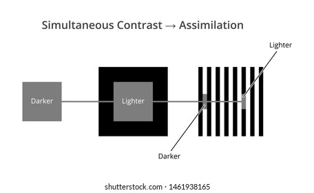Vector icon of simultaneous contrast and assimilation isolated. Contrast effect background dependent. Lighter and darker gray square or line influenced by background. Phenomenon of human visual system