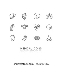 Vector Icon Style Illustration of Medical Health Services
