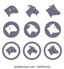 Vector icons and badges of lamb goat and cow