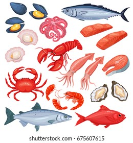 Vector icons of mussel, fish salmon, shrimp. Lobster, squid, octopus, scallop, lobster, craps, mollusk, oyster, alfonsino and tuna. Seafood in cartoon style.