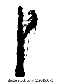 Vector iIllustration of the sillouette of a Tree Surgeon with a safety rope at the top of a tall tree.