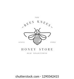 Vector illustartion logo and design template or badge. Organic and eco honey label- bee. Linear style