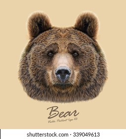 Vector Illustrated Portrait of Bear on beige background. The head of an adult brown bear