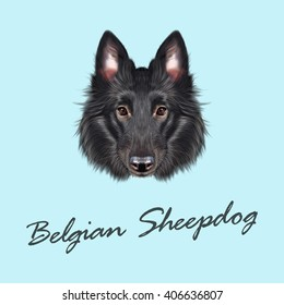 Vector Illustrated portrait of Belgian Shepherd. Cute face of black domestic dog on blue background.