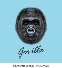 Vector Illustrated portrait of Gorilla male. Cute head of wild ape on blue background.