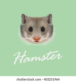 Vector Illustrated portrait of Hamster. Cute grey face of domestic Hamster on green background.