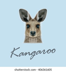 Vector Illustrated portrait of Kangaroo. Cute head of wild Australian mammal on blue background.