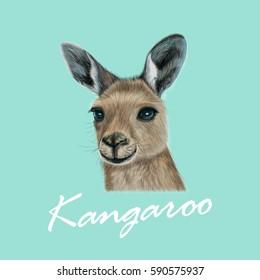 Vector Illustrated portrait of Kangaroo. Cute head of wild Australian mammal on blue background.