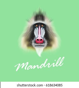 Vector Illustrated portrait of Mandrill monkey. Cute fluffy face of primate on green background.