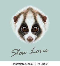Vector Illustrated Portrait of Slow loris. Very cute face of Slow loris on blue background.