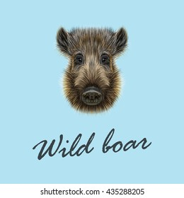 Vector Illustrated of Wild boar.  Formidable face of wild pig on blue background.