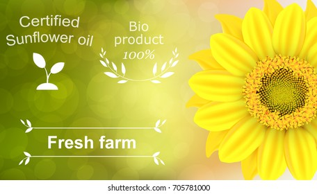 Vector illustration of a 100% natural certified sunflower oil background. Ready objects, elements with agriculture theme for your flyer, banner, infographics, poster, advertisement, greeting card.