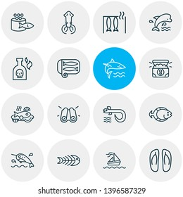 Vector illustration of 16 marine icons line style. Editable set of smoked fish, sardine, eel and other icon elements.