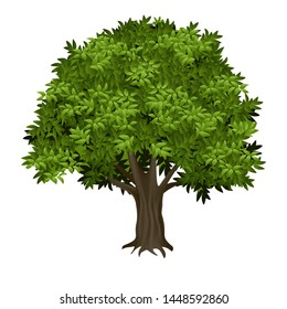 Vector illustration 3D tree realistic image isolated trunk with thick wrinkled bark and green leaves oak, elm or poplar