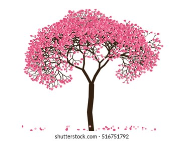 Vector illustration an abstract blossoming cherry tree against white background