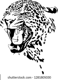 Vector illustration of abstract growling leopard. leopard head black isolated on white background