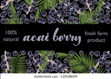 vector illustration of acai berry and leaf design with lettering acai berry background black and berry and text fresh farm product 100% natural EPS10