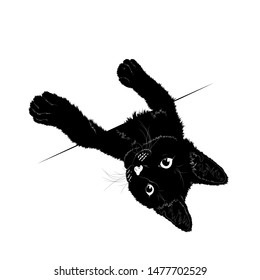 Vector illustration. Ad space. Black silhouette of cat.EPS 8