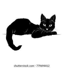 Vector illustration. Ad space. Black silhouette of cat