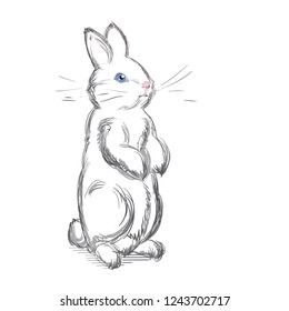 Rabbit Cartoon Images Stock Photos Vectors Shutterstock