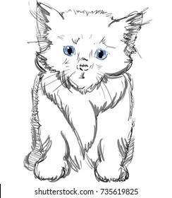 Image of: Cat Vector Illustration Of Adorable Cat Sketched Little Cute Kitten Monochrome Freehand Drawing Kids Shutterstock Kitten Cartoon Images Stock Photos Vectors Shutterstock
