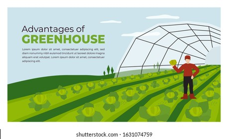 Vector illustration of advantages of greenhouse. Farmer with vegetables in hand. Farming plant cultivation. Design for agriculture, horticulture or agronomy. Template for banner, poster, flyer, layout